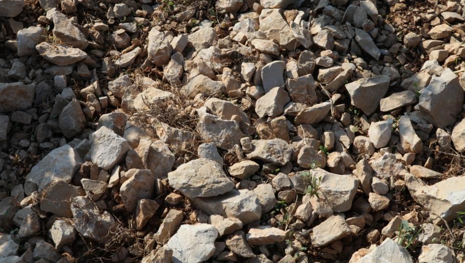 Calcaires durs Chateau de Lancyre AOC Coteaux du Languedoc Pic Saint Loup