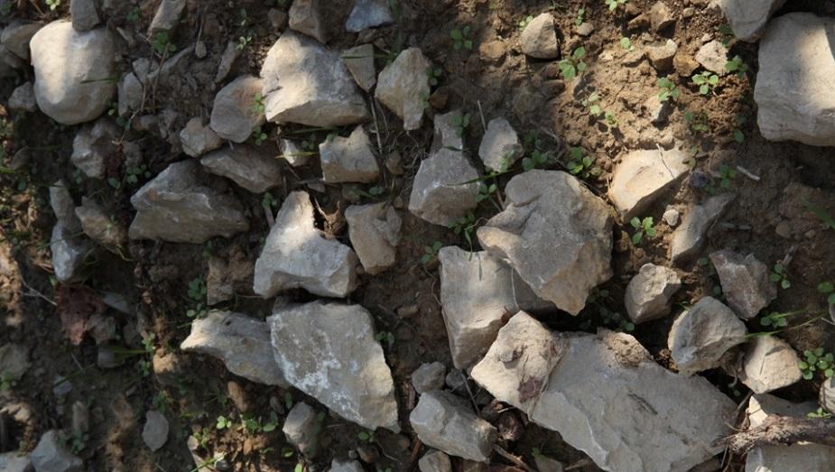 Marno calcaire Chateau de Lancyre AOC Coteaux du Languedoc Pic Saint Loup