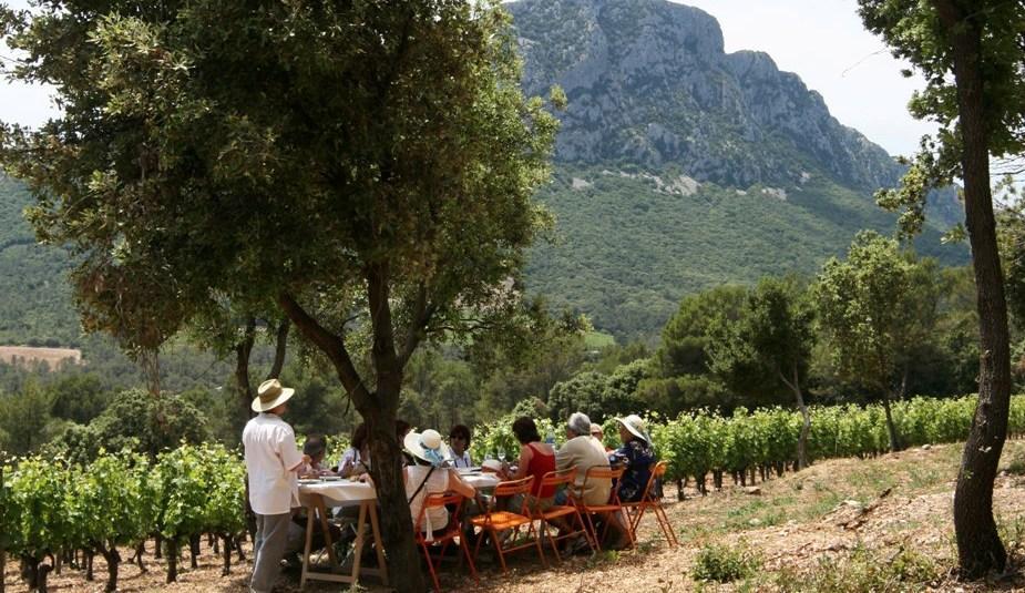 ambiance champetre au vignes buissoniere Chateau de Lancyre vignerons en AOC Coteaux du Languedoc Pic Saint Loup