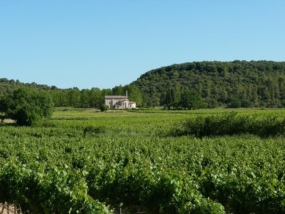 Chapelle d Aleyrac Chateau de Lancyre AOC Coteaux du Languedoc Pic Saint Loup