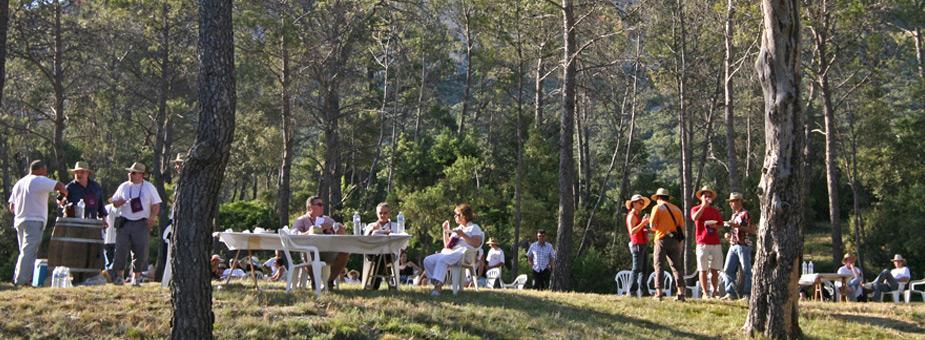 festivités en pic saint loup : les vignes buissonnières