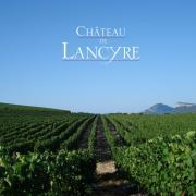 Chateau de Lancyre vigneron en AOC Coteaux du Languedoc Pic Saint Loup