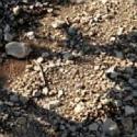 Limestone scree Chateau de Lancyre AOC Coteaux du Languedoc Pic Saint Loup